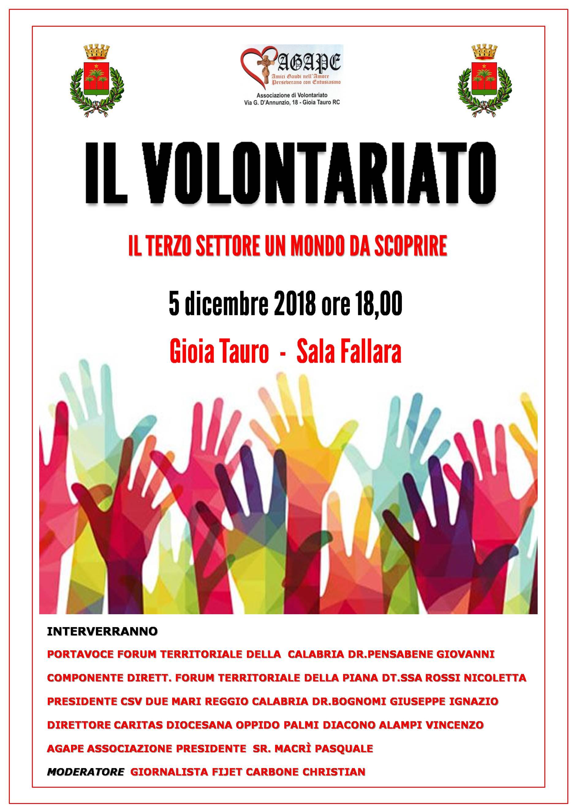 IL_VOLONTARIATO_5.12.2018